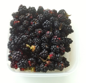 A box of blackberries